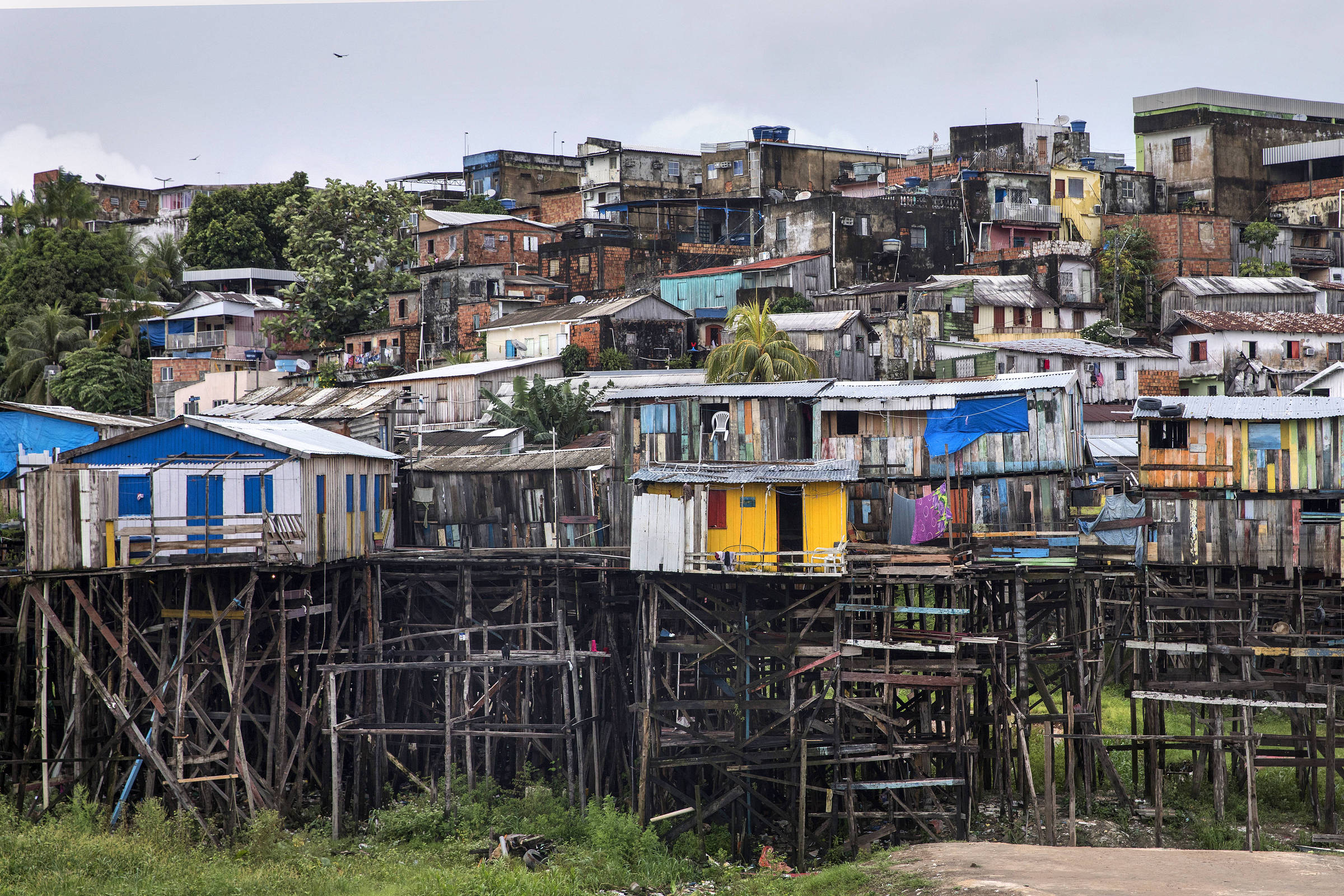 a85a58caa7e Brazilian Families in Manaus Live in Houses Flooded With Dirty Water for  Two Months a Year