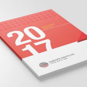 Relatório Anual Instituto Igarapé 2017