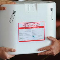 Donación de órganos, miedo visceral