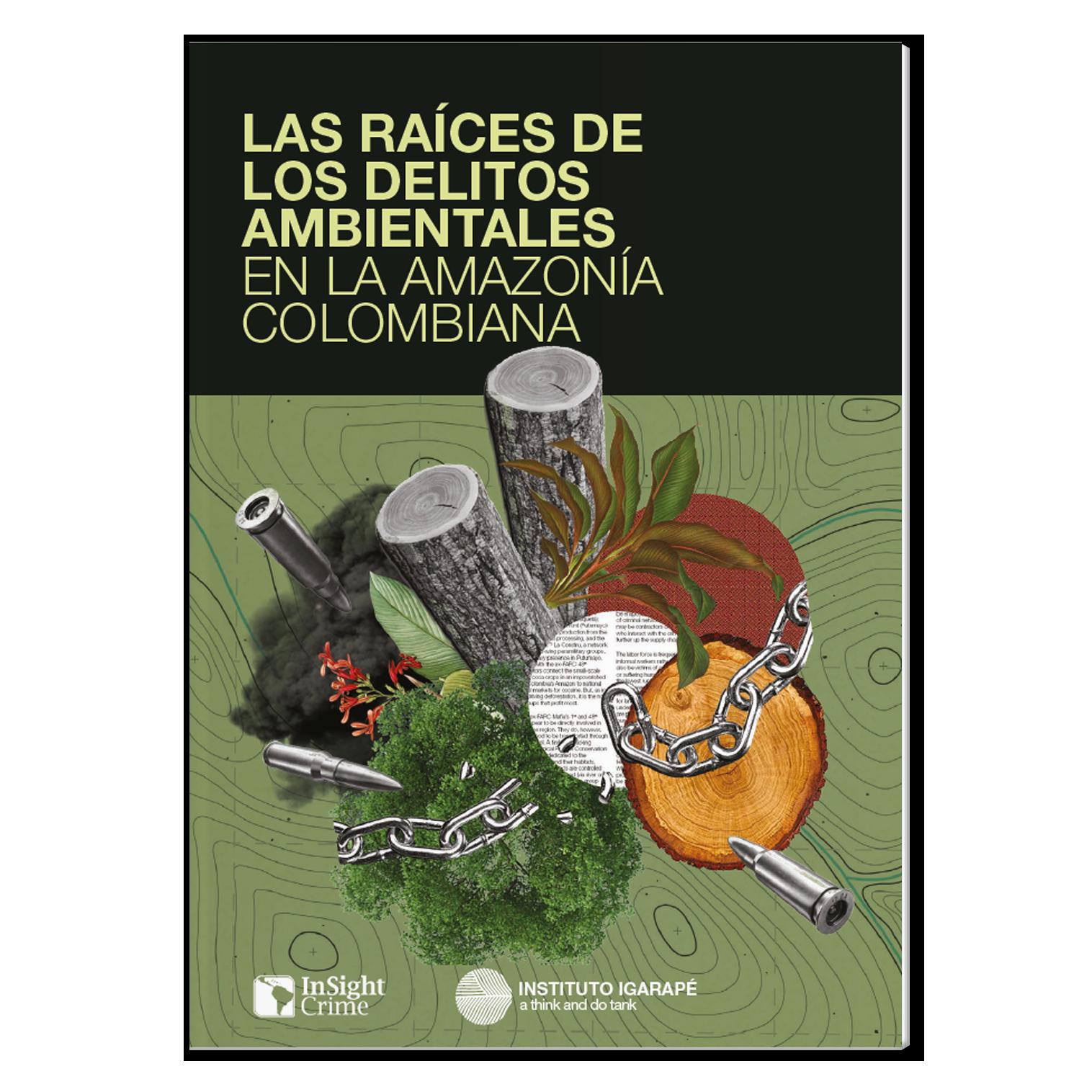 Las raíces de los delitos ambientales en la Amazonia Colombiana